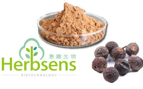 Soapberry Seed Extract-无患子提取物